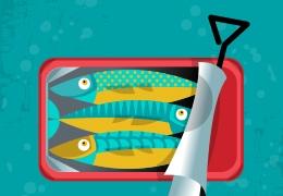 Αλιεύματα: μεταποίηση, επεξεργασία, συντήρηση