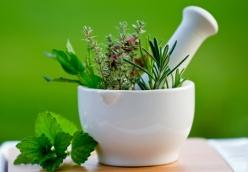 Παράγω τα δικά μου αρωματικά φυτά και βότανα Μαγειρικής